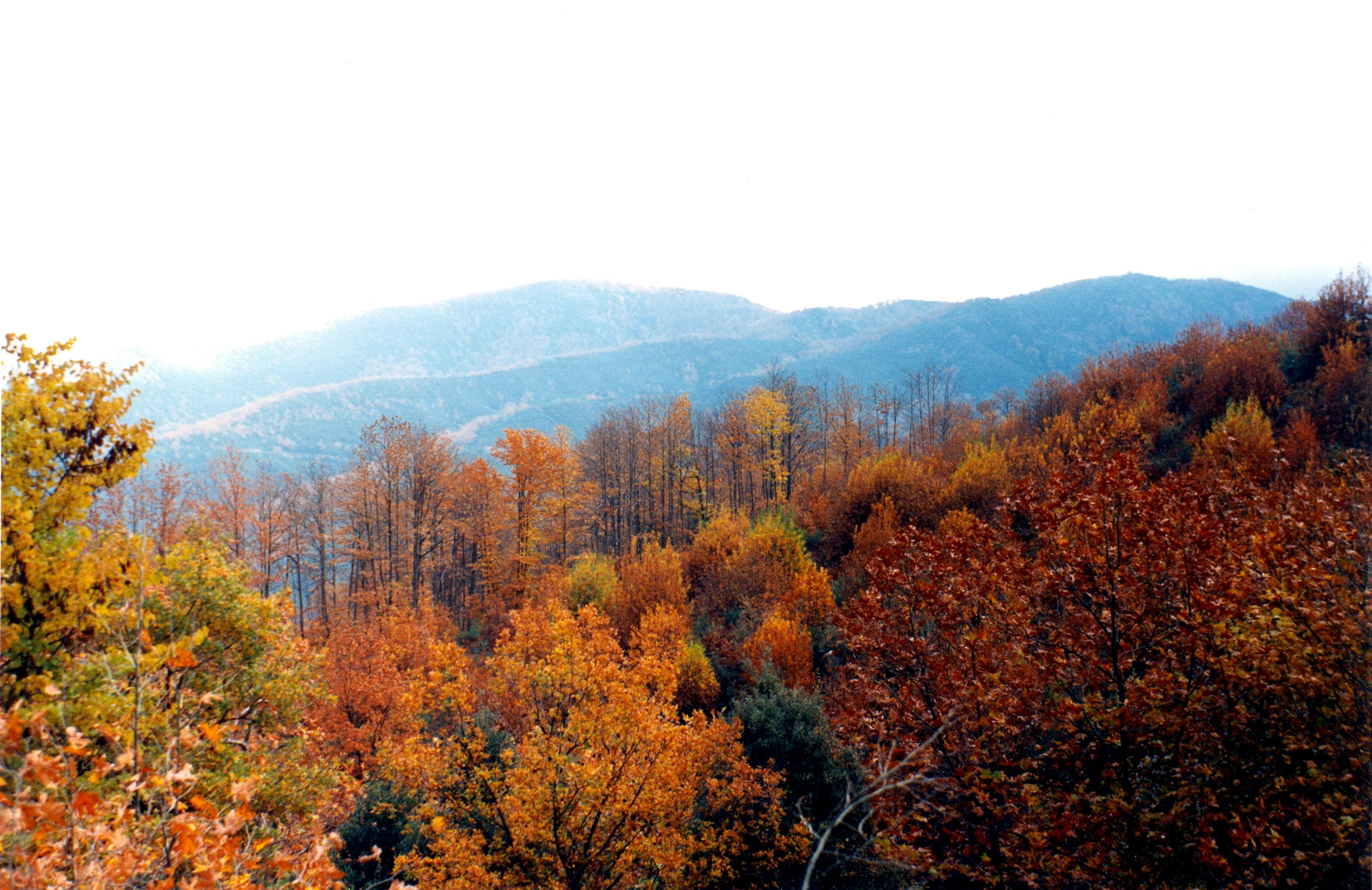 Αράκυνθος - Φθινόπωρο